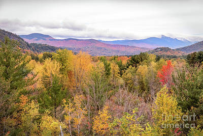 Photograph - White Mountains 4 by Cheryl Del Toro