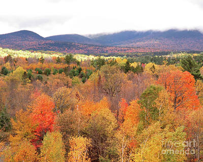 Photograph - White Mountains by Cheryl Del Toro