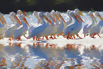 Photograph - White Pelicans Abstract by Alice Gipson