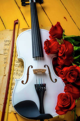 Photograph - White Romantic Violin by Garry Gay