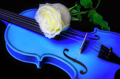 Photograph - White Rose And Blue Violin by Garry Gay