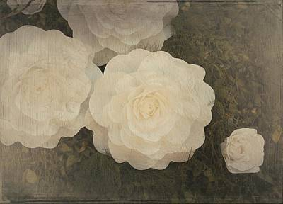 Photograph - White Roses by Silvia Marcoschamer