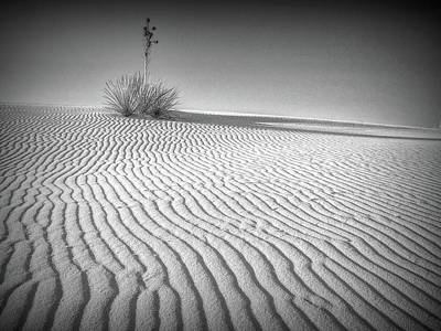 Photograph - White Sands by Phyllis Holler