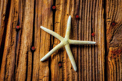 Photograph -  White Star On Old Boards by Garry Gay