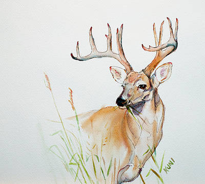 Painting - White Tail Buck by Philip and Karen Rispin