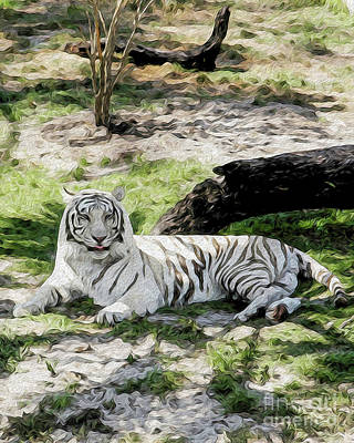 Digital Art - White Tiger At Rest by Kenneth Montgomery