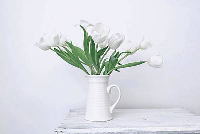Photograph - White Tulip Love by Kim Hojnacki