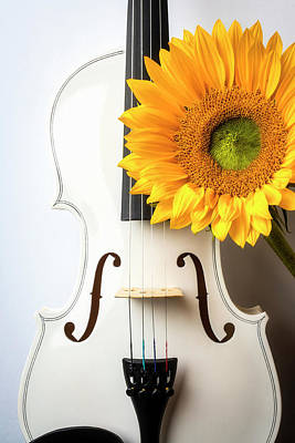 Photograph - White Violin And Sunflower by Garry Gay