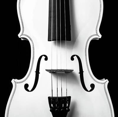 Photograph - White Violin Close Up by Garry Gay