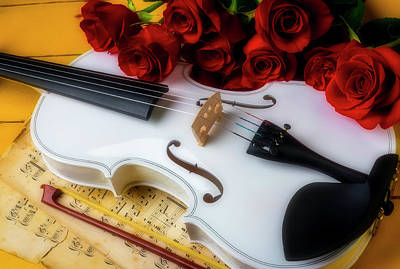 Photograph - White Violin Still Life by Garry Gay