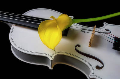 Photograph - White Violin With Yellow Calla Lily by Garry Gay