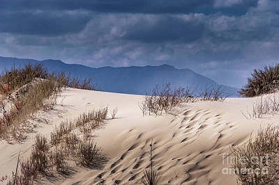 Photograph - Whites Sands National Monument #2 by Blake Webster