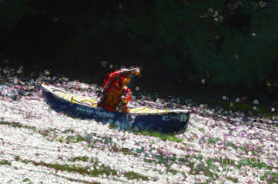 Photograph - Whitewater Canoe In Fast River - Painterly by Les Palenik