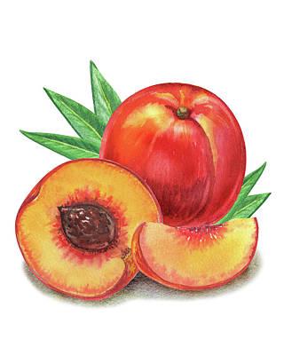 Painting - Whole And Cut Peach Watercolor Illustration  by Irina Sztukowski