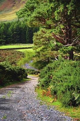 Photograph - Wicklow Journey. Rural Road by Jenny Rainbow