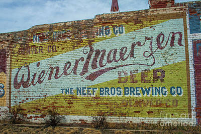 Photograph - Wiener Maerzen Beer by Tony Baca