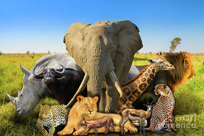 Photograph - Wild African Animals Background by Benny Marty