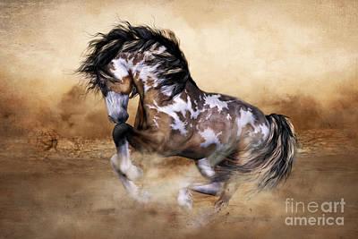 Wild And Free Horse Art Art Print