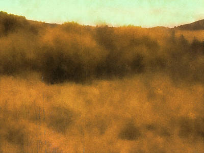 Digital Art - Wild And Golden by David King