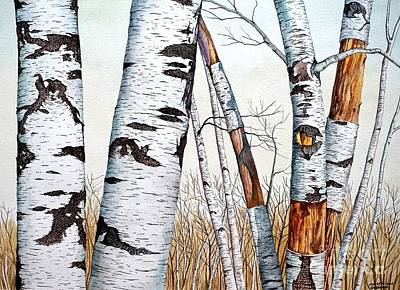 Painting - Wild Birch Trees In The Forest by Christopher Shellhammer