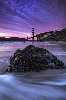 Wild Gate, Golden Gate Bridge Art Print by Vincent James