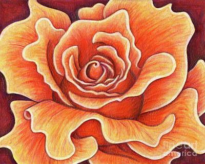 Painting - Wild Orange Rose by Amy E Fraser