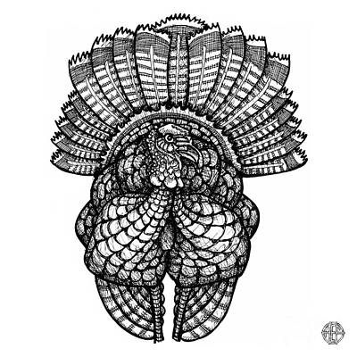 Drawing - Wild Turkey by Amy E Fraser