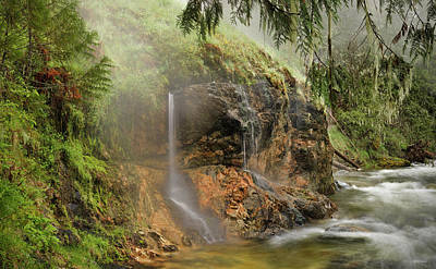 Photograph - Wilderness Hot Springs by Leland D Howard