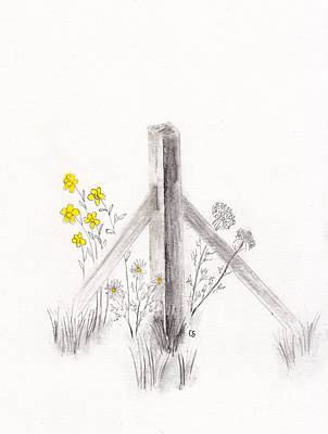 Drawing - Wildflowers And Fence Post by Conni Schaftenaar