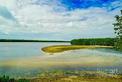 Photograph - Wildlife Refuge On Sanibel Island by Susan Rydberg