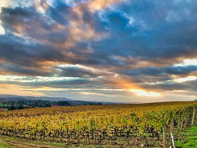 Photograph - Willamette Valley In Fall by Brian Eberly