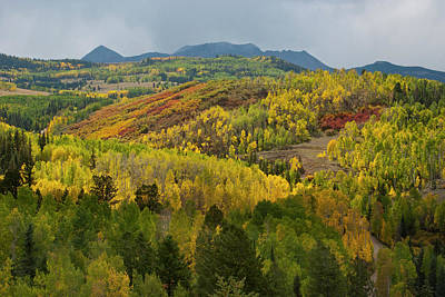 Photograph - Wilson Mesa Autumn Glory by Cascade Colors
