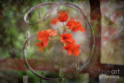 Photograph - Wind Chimes Through The Window by Mary Lou Chmura