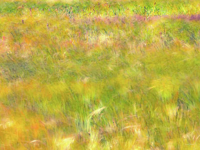 Photograph - Wind Painting by Leland D Howard