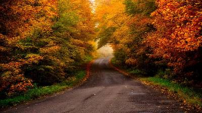 Photograph - Winding Road by Bryan Smith