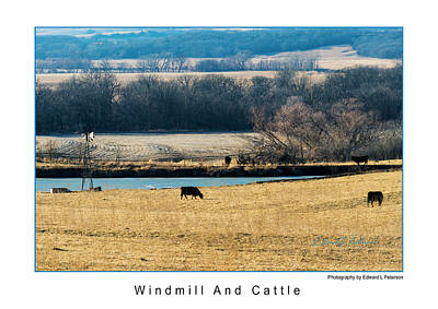 Photograph - Windmill And Cattle by Edward Peterson