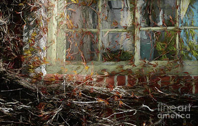 Water Droplets Sharon Johnstone - Window and Vines by Mike Nellums