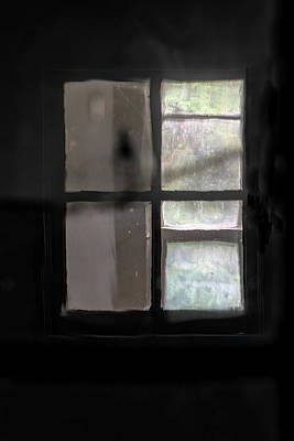 Photograph - Window Light by Tom Singleton