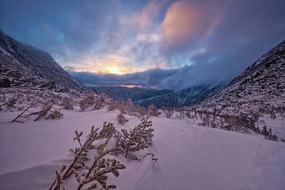 Photograph - Windswept, Spring Sunrise In Tuckerman Ravine by Jeff Sinon