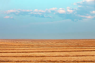 Photograph - Windy Rows by Todd Klassy