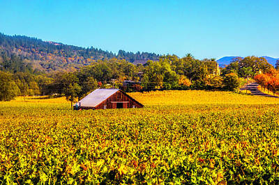 Photograph - Wine Barn In The Vineyards by Garry Gay