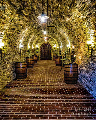 Photograph - Wine Cellar by Nick Zelinsky