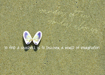 Photograph - Winged Coquina Quote by JAMART Photography