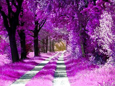Photograph - Winsen Luhe - The Pink-purple Forest by Patricia Piotrak