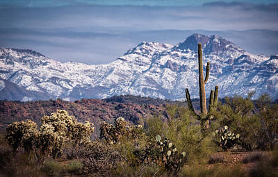 Photograph - Winter Arrives In The Sonoran  by Saija Lehtonen
