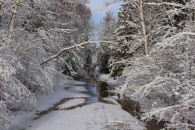 Photograph - Winter At Whitefish Bay Creek by David T Wilkinson