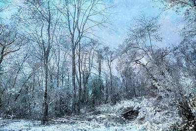 Photograph - Winter Blues by John Rivera