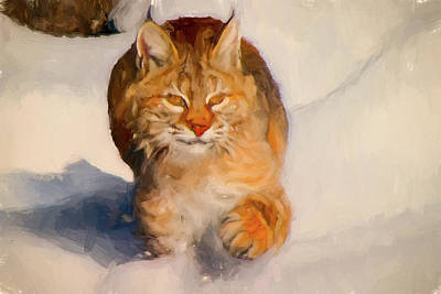 Painting - Winter Bobcat  by Bob Orsillo
