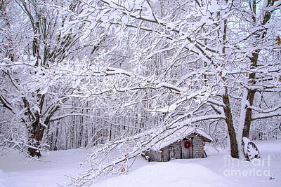Photograph - Winter Coop by Alana Ranney