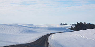 Photograph - Winter Country Road 2 by Tatiana Travelways